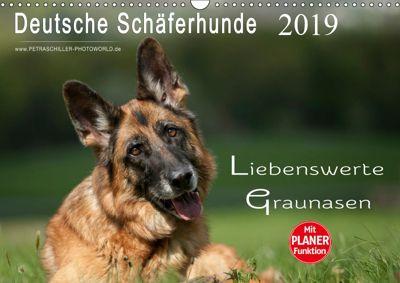 Deutsche Schäferhunde - Liebenswerte Graunasen (Wandkalender 2019 DIN A3 quer), Petra Schiller