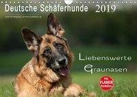 Deutsche Schäferhunde - Liebenswerte Graunasen (Wandkalender 2019 DIN A4 quer), Petra Schiller