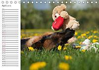 Deutsche Schäferhunde Seelentröster (Tischkalender 2019 DIN A5 quer) - Produktdetailbild 4