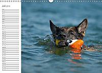 Deutsche Schäferhunde Seelentröster (Wandkalender 2019 DIN A3 quer) - Produktdetailbild 4