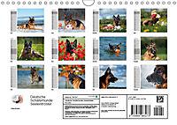 Deutsche Schäferhunde Seelentröster (Wandkalender 2019 DIN A4 quer) - Produktdetailbild 13