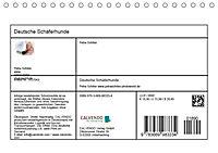 Deutsche Schäferhunde - Senioren auf vier Pfoten (Tischkalender 2019 DIN A5 quer) - Produktdetailbild 13