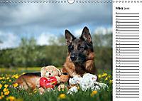 Deutsche Schäferhunde - Traumhunde (Wandkalender 2019 DIN A3 quer) - Produktdetailbild 3