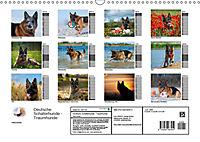 Deutsche Schäferhunde - Traumhunde (Wandkalender 2019 DIN A3 quer) - Produktdetailbild 13