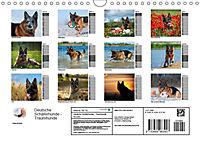 Deutsche Schäferhunde - Traumhunde (Wandkalender 2019 DIN A4 quer) - Produktdetailbild 13