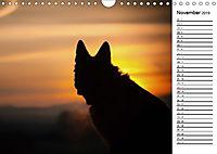 Deutsche Schäferhunde - Traumhunde (Wandkalender 2019 DIN A4 quer) - Produktdetailbild 11