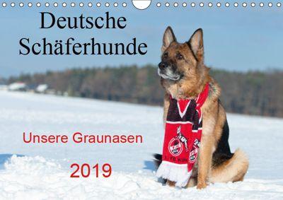 Deutsche Schäferhunde Unsere Graunasen (Wandkalender 2019 DIN A4 quer), Petra Schiller