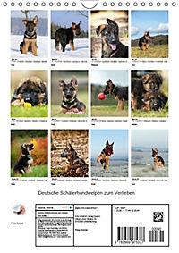 Deutsche Schäferhundwelpen zum Verlieben (Wandkalender 2019 DIN A4 hoch) - Produktdetailbild 13