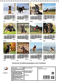 Deutsche Schäferhundwelpen zum Verlieben (Wandkalender 2019 DIN A3 hoch) - Produktdetailbild 13