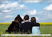 Deutscher Schäferhund - Der beste Freund des Menschen (Wandkalender 2019 DIN A2 quer) - Produktdetailbild 3