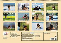 Deutscher Schäferhund - Der beste Freund des Menschen (Wandkalender 2019 DIN A2 quer) - Produktdetailbild 13