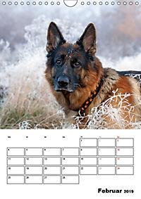 Deutscher Schäferhund - Der beste Freund des Menschen (Wandkalender 2019 DIN A4 hoch) - Produktdetailbild 2