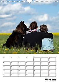 Deutscher Schäferhund - Der beste Freund des Menschen (Wandkalender 2019 DIN A4 hoch) - Produktdetailbild 3
