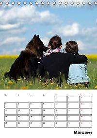 Deutscher Schäferhund - Der beste Freund des Menschen (Tischkalender 2019 DIN A5 hoch) - Produktdetailbild 3