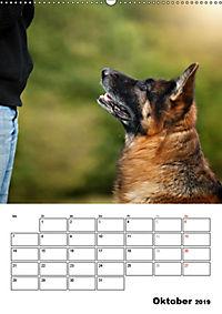 Deutscher Schäferhund - Der beste Freund des Menschen (Wandkalender 2019 DIN A2 hoch) - Produktdetailbild 10