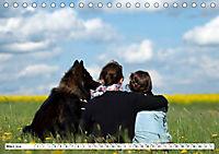 Deutscher Schäferhund - Der beste Freund des Menschen (Tischkalender 2019 DIN A5 quer) - Produktdetailbild 3