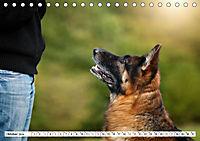 Deutscher Schäferhund - Der beste Freund des Menschen (Tischkalender 2019 DIN A5 quer) - Produktdetailbild 10