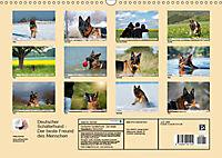 Deutscher Schäferhund - Der beste Freund des Menschen (Wandkalender 2019 DIN A3 quer) - Produktdetailbild 13
