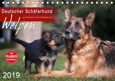 Deutscher Schäferhund - Welpen (Tischkalender 2019 DIN A5 quer), Petra Schiller