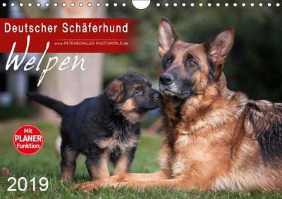 Deutscher Schäferhund - Welpen (Wandkalender 2019 DIN A4 quer), Petra Schiller