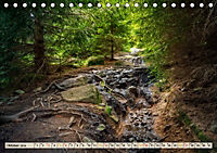 Deutschland - Nationalparks (Tischkalender 2019 DIN A5 quer) - Produktdetailbild 10