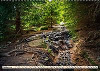 Deutschland - Nationalparks (Wandkalender 2019 DIN A2 quer) - Produktdetailbild 10