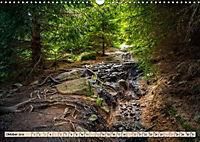 Deutschland - Nationalparks (Wandkalender 2019 DIN A3 quer) - Produktdetailbild 10