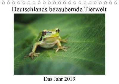 Deutschlands bezaubernde Tierwelt (Tischkalender 2019 DIN A5 quer), Björn Reibert