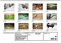 Deutschlands bezaubernde Tierwelt (Wandkalender 2019 DIN A2 quer) - Produktdetailbild 12