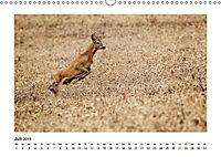 Deutschlands bezaubernde Tierwelt (Wandkalender 2019 DIN A3 quer) - Produktdetailbild 12