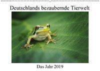 Deutschlands bezaubernde Tierwelt (Wandkalender 2019 DIN A2 quer), Björn Reibert