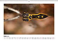 Deutschlands bezaubernde Tierwelt (Wandkalender 2019 DIN A3 quer) - Produktdetailbild 3