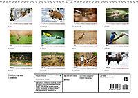 Deutschlands bezaubernde Tierwelt (Wandkalender 2019 DIN A3 quer) - Produktdetailbild 13