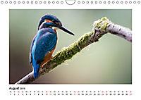 Deutschlands bezaubernde Tierwelt (Wandkalender 2019 DIN A4 quer) - Produktdetailbild 8