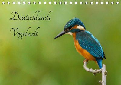 Deutschlands Vogelwelt (Tischkalender 2019 DIN A5 quer), Alexander Honold