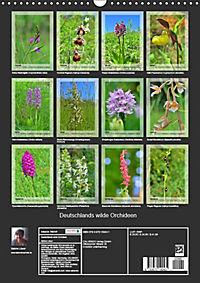 Deutschlands wilde Orchideen (Wandkalender 2019 DIN A3 hoch) - Produktdetailbild 13