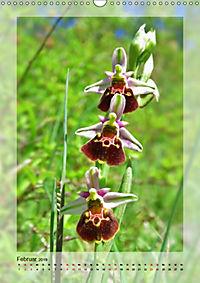 Deutschlands wilde Orchideen (Wandkalender 2019 DIN A3 hoch) - Produktdetailbild 2