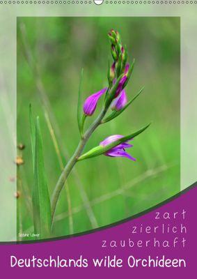 Deutschlands wilde Orchideen (Wandkalender 2019 DIN A2 hoch), Sabine Löwer