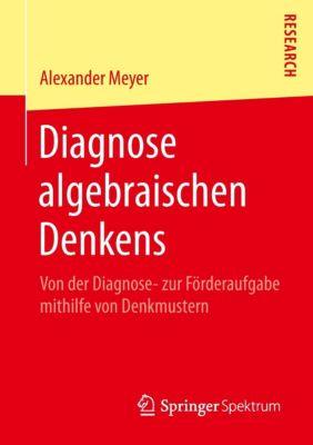 Diagnose algebraischen Denkens, Alexander Meyer