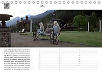 Dialen, Nymphen im Engadin (Tischkalender 2019 DIN A5 quer) - Produktdetailbild 5