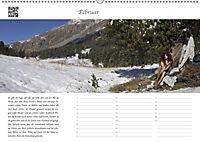Dialen, Nymphen im Engadin (Wandkalender 2019 DIN A2 quer) - Produktdetailbild 2