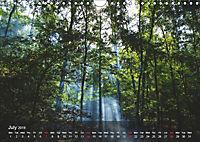 Did someone say Dobrogea? (Wall Calendar 2019 DIN A4 Landscape) - Produktdetailbild 7