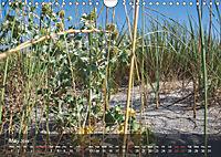 Did someone say Dobrogea? (Wall Calendar 2019 DIN A4 Landscape) - Produktdetailbild 5