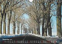 Did someone say Dobrogea? (Wall Calendar 2019 DIN A4 Landscape) - Produktdetailbild 12