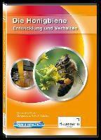 Didaktische DVD Honigbiene - Entwicklung und Verhalten