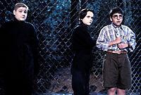 Die Addams Family in verrückter Tradition - Produktdetailbild 4