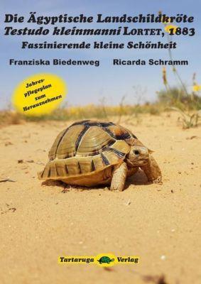 Die Ägyptische Landschildkröte Testudo kleinmanni Lortet, 1883, Franziska Biedenweg, Ricarda Schramm