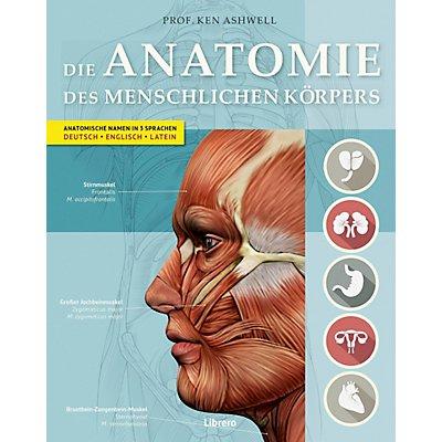 Die Anatomie des menschlichen Körpers Buch portofrei - Weltbild.de