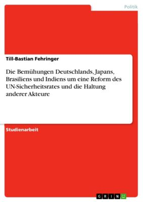Die Bemühungen Deutschlands, Japans, Brasiliens und Indiens um eine Reform des UN-Sicherheitsrates und die Haltung anderer Akteure, Till-Bastian Fehringer