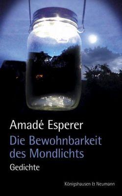 Die Bewohnbarkeit des Mondlichts, Amadé Esperer